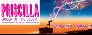 Priscilla Queen of the Desert, the Musical, at the Rhino May 27 - July 2